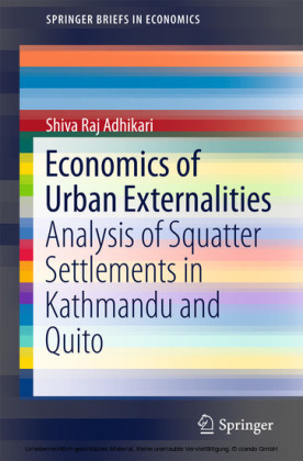 Economics of Urban Externalities