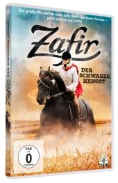 Zafir - Der schwarze Hengst, 1 DVD Cover