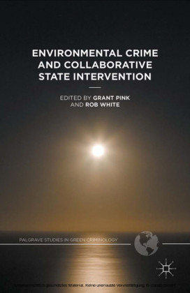 Environmental Crime and Collaborative State Intervention