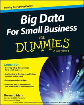 Big Data For Small Business For Dummies