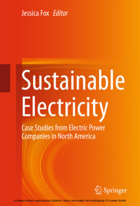 Sustainable Electricity