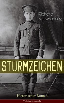 Sturmzeichen (Historischer Roman)