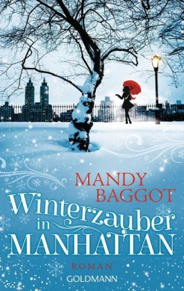 Winterzauber in Manhattan