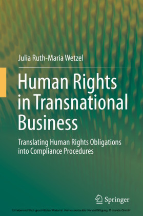 Human Rights in Transnational Business