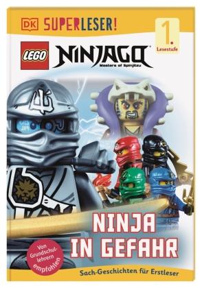 LEGO Ninjago - Ninja in Gefahr
