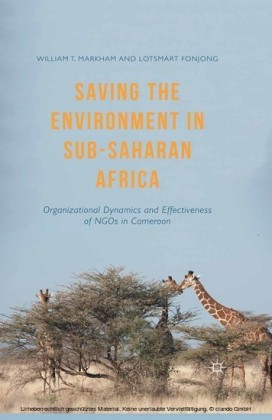 Saving the Environment in Sub-Saharan Africa