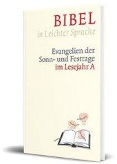 Bibel in leichter Sprache Cover