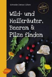 Wild- und Heilkräuter, Beeren und Pilze finden Cover