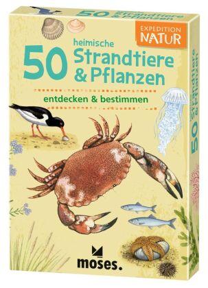 50 heimische Strandtiere & Pflanzen entdecken & bestimmen