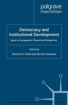 Democracy and Institutional Development