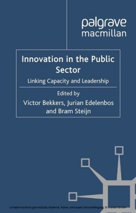 Innovation in the Public Sector