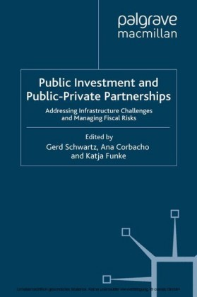 Public Investment and Public-Private Partnerships