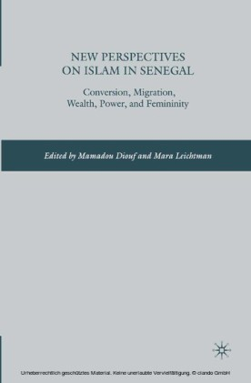 New Perspectives on Islam in Senegal