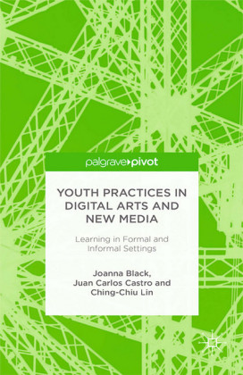 Youth Practices in Digital Arts and New Media