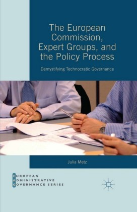 The European Commission, Expert Groups, and the Policy Process