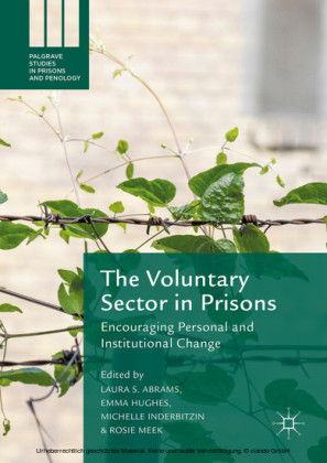 The Voluntary Sector in Prisons