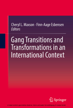 Gang Transitions and Transformations in an International Context