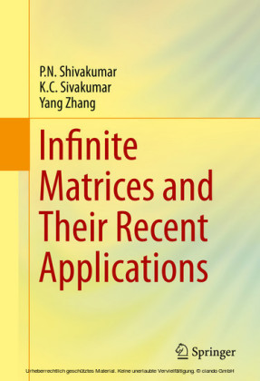 Infinite Matrices and Their Recent Applications