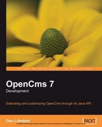 OpenCms 7 Development