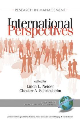 Research in Management International Perspectives