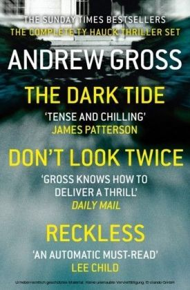 Andrew Gross 3-Book Thriller Collection 1