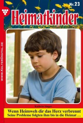 Heimatkinder 23 - Heimatroman