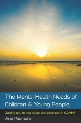 The Mental Health Needs Of Children & Young People