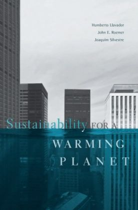 Sustainability for a Warming Planet