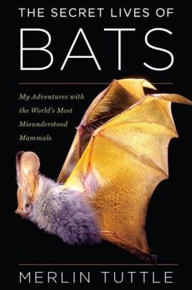 Secret Lives of Bats