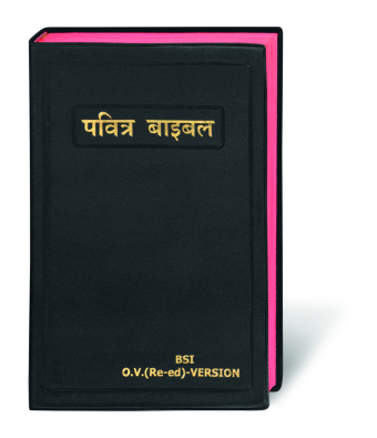 Bibel Hindi / Holy Bible Hindi, traditionelle Übersetzung