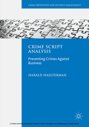 Crime Script Analysis