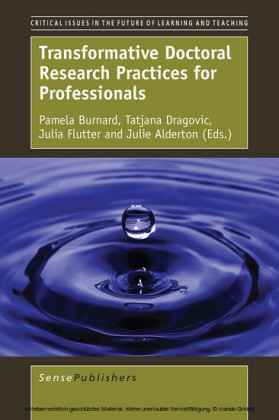 Transformative Doctoral Research Practices for Professionals