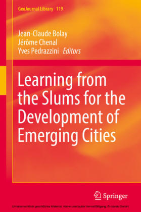 Learning from the Slums for the Development of Emerging Cities
