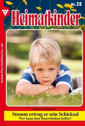 Heimatkinder 28 - Heimatroman