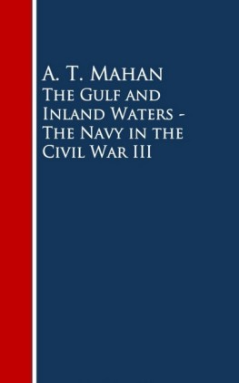 The Gulf and Inland Waters - The Navy in the Civil War III