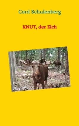 Knut, der Elch