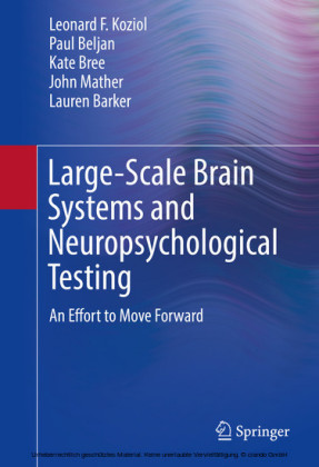 Large-Scale Brain Systems and Neuropsychological Testing