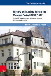 History and Society during the Mamluk Period (1250-1517)