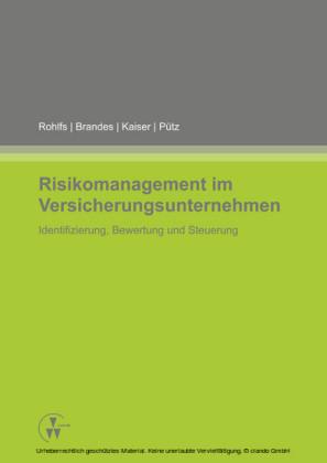 Risikomanagement im Versicherungsunternehmen