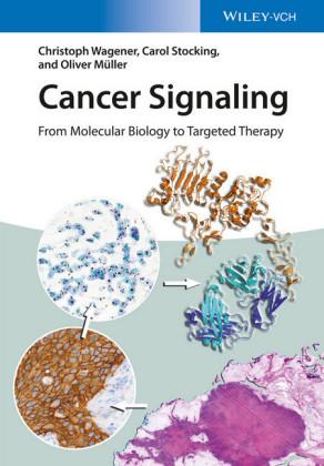 Cancer Signaling