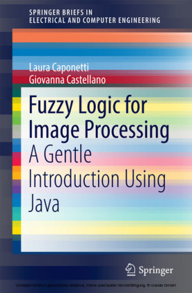 Fuzzy Logic for Image Processing