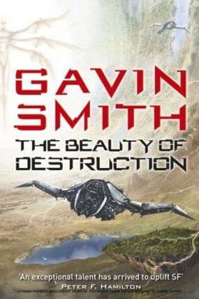 Beauty of Destruction