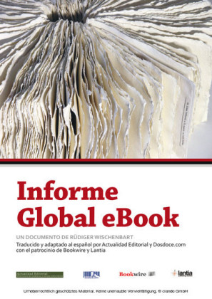 Informe Global eBook (edición 2013)