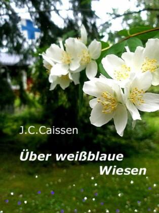 Über weißblaue Wiesen