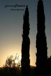 Toskana, Siena, Pisa, Florenz