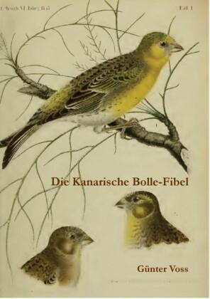 Die Kanarische Bolle-Fibel