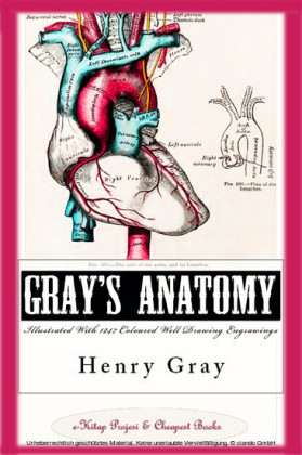 Gray's Anatomy (Illustrated With 1247 Coloured Well Drawing Engrawings)