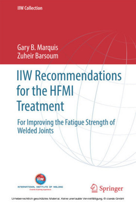 IIW Recommendations for the HFMI Treatment
