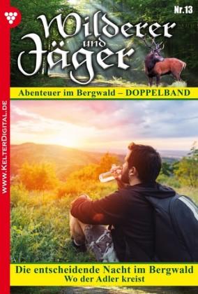 Wilderer und Jäger 13 - Heimatroman