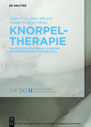 Knorpeltherapie